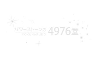 【限定品】シルバールチルブレスレット 12mm